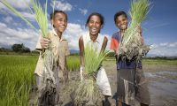 Empower Rural Communities in Timor-Leste in Timor-Leste, Run by: Oxfam Australia