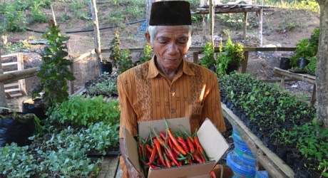 Educate Communities for Food Security in Nias, Indonesia
